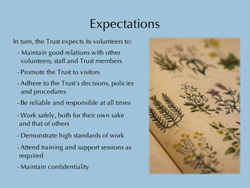 Expectations slide for Volunteer Handbook E-Learning module